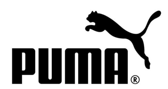 Buty sportowe damskie Puma Vikky v2 369725 18