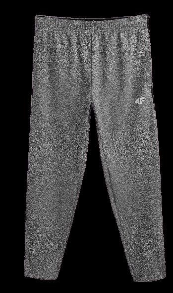 Spodnie sportowe chłopięce 4F JSPMTR001 szare